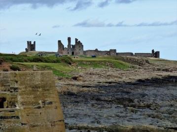 craster-and-dunstanburgh-13